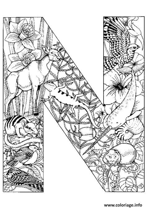 Coloriage Lettre N Alphabet Animaux Dessin