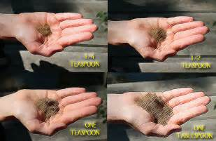 aide memoire learning to measure teaspoons and
