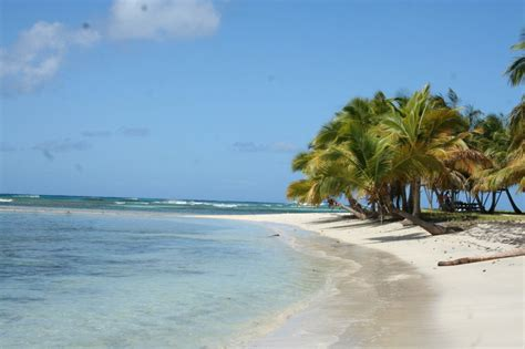 mustique island mustique yacht charter news and boating