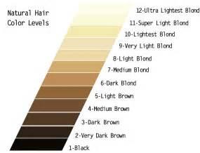 level 6 hair color level 6 haircolor photos brown hairs