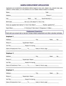 Job Application Example   Best Business Template