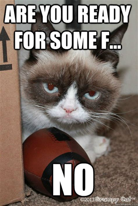 Football Cat Meme - are you ready for some f no grumpy cat football