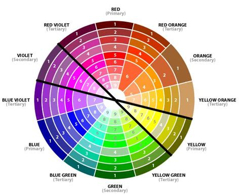 colour complements 25 best ideas about complimentary colors on pinterest