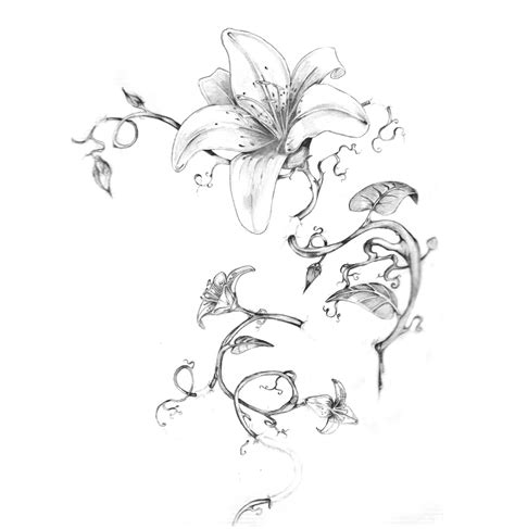 tattoo flower sketch flower sketch tattoo back