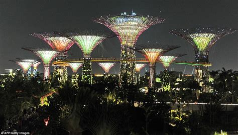 Puts Our Christmas Lights To Shame Mesmerising Forest Of Solar Lights Singapore