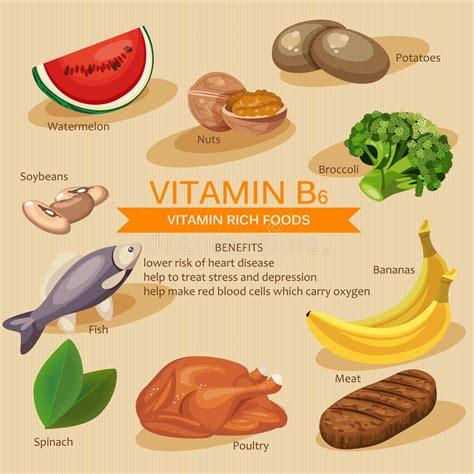 alimenti vitamina b6 vitamins and minerals foods illustration vector set of
