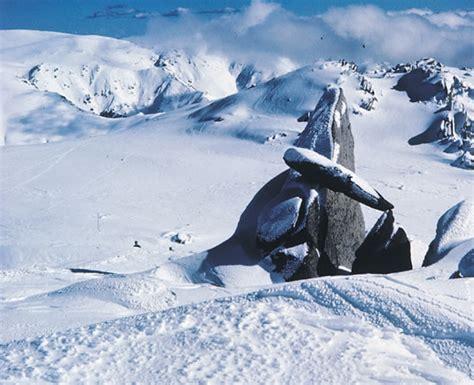 Find Information On In Australia Australian Alps Bioregion Nsw Environment Heritage