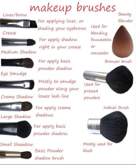 makeup themes names do you want to know the name and use of each makeup brush