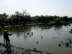 Pakan Udang Sungai solidaritas anti kejahatan korporasi kali porong tercemar