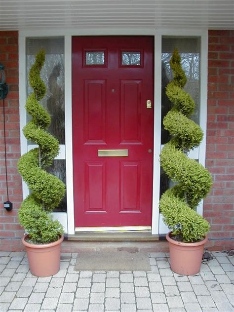 plants for outside front door front door plant ideas http lomets