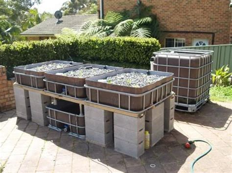 backyard aquaponics system design aquaponics ibc tote sump system one pump google search