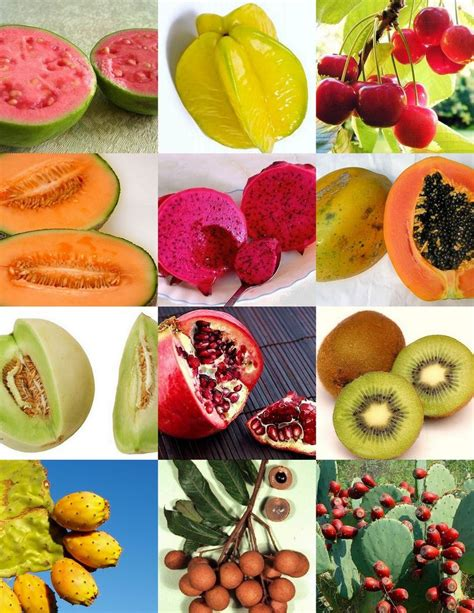 fruits with seeds fruits mix sweet edible plant tree fragrant