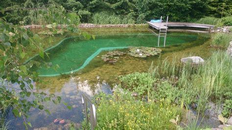 algen im teich 1300 schwimmteich bioteiche 214 koteiche zierteiche kaufbeuren