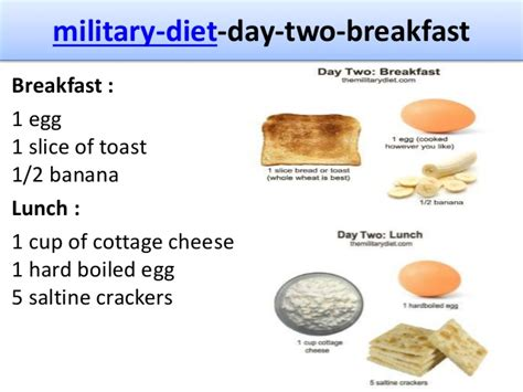 3 Day Cottage Cheese Diet by The 3 Day Diet Information And Reviews
