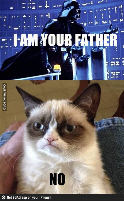 Internet Meme Cat - grumpy cat internet meme invades star wars socialeyezer