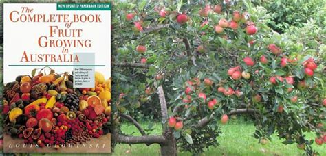 the digger and the flower books complete book of fruit growing the diggers club