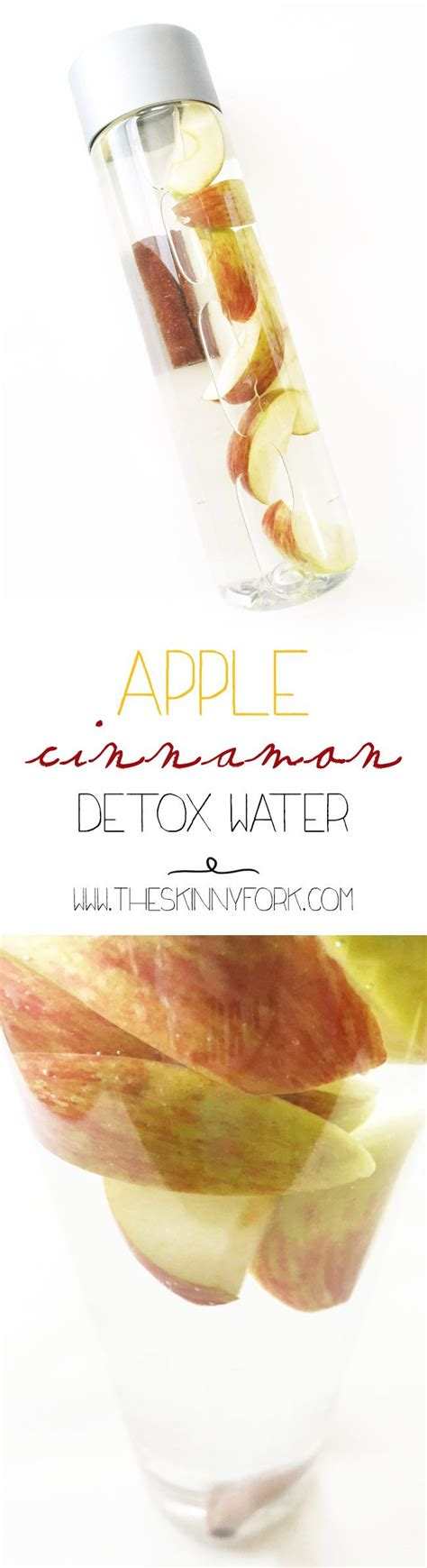 Cinnamon Liver Detox by Best 25 Apple Detox Water Ideas On Detox Diet