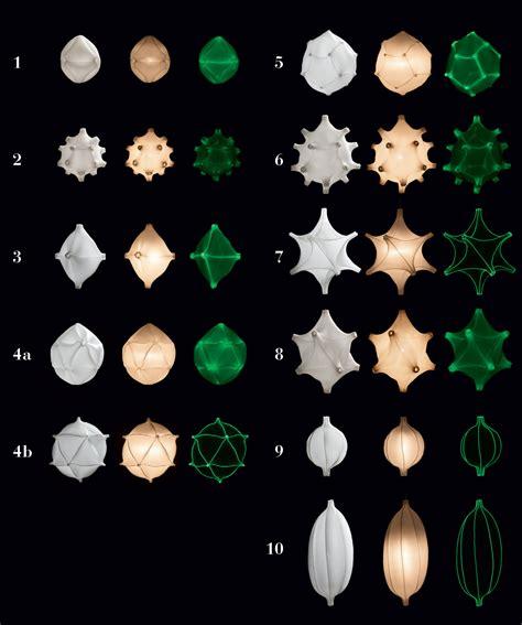glow in the dark l bernotat co radiolaria metamorphosus lucidus gimmii