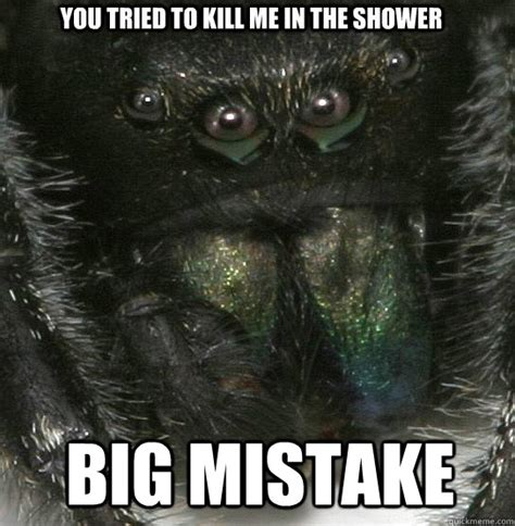 Shower Spider Meme - you tried to kill me in the shower big mistake vengeful