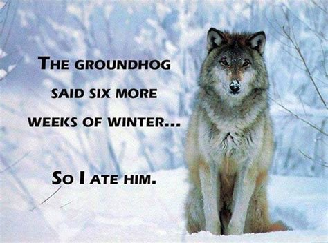 Groundhog Meme - groundhog day 2015 the memes you need to see heavy com