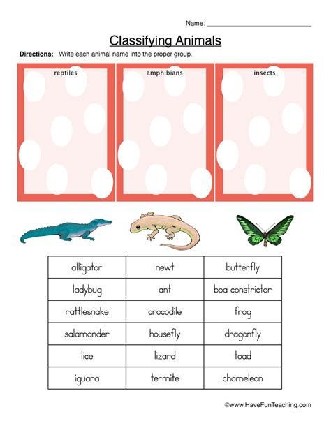 Animal Classification Worksheet by Classifying Animals Worksheet Reptiles Hibians Or