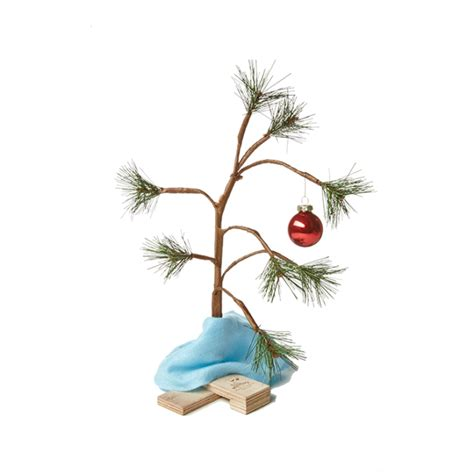 large charlie brown christmas tree quotes brown tree quotesgram