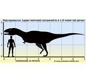 Majungasaurus  Paleontology World