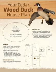 wood duck house plans 1000 ideas about nest box on coops chicken