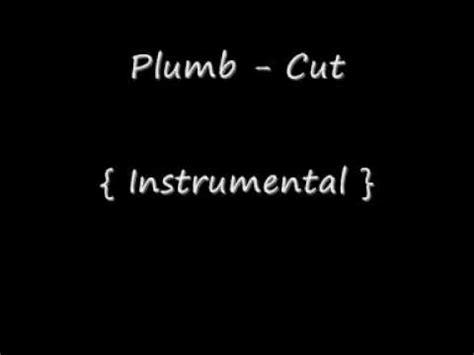 Lyrics Cut Plumb by Plumb Cut Instrumental