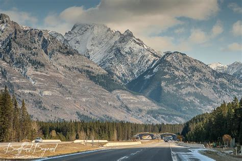 tails from the highway banff canada bow valley parkway a scenic drive in banff banffandbeyond