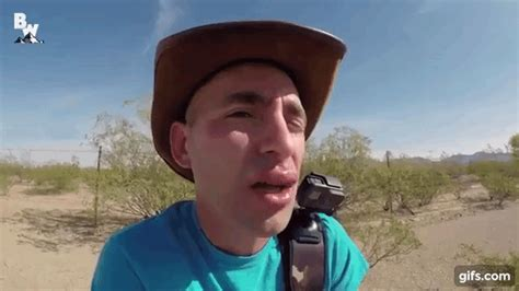 coyote peterson swarm of 3000 angry bees sting coyote peterson s