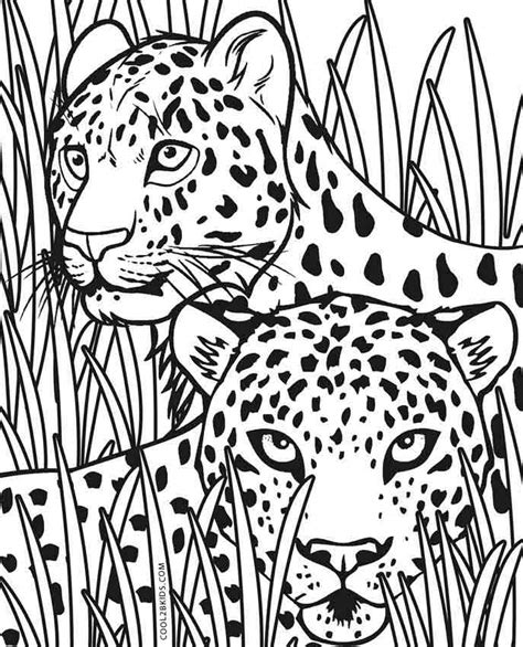 what color is a cheetah printable cheetah coloring pages for cool2bkids