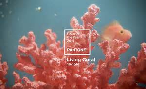 color of the year pantone what to about the 2019 pantone color of the year