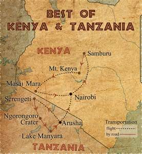 kenya or tanzania safari better choose an itinerary rhino adventures