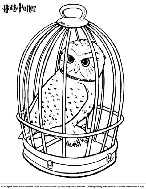 coloring page harry potter harry potter coloring page harry pinterest harry