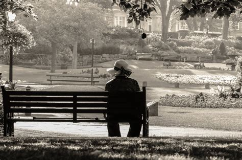 sitting the bench woman sitting alone on a bench free stock photo public