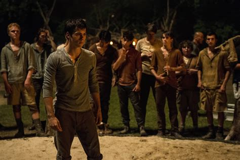 the maze runner maze runner 3 the cure set for 2017 release collider