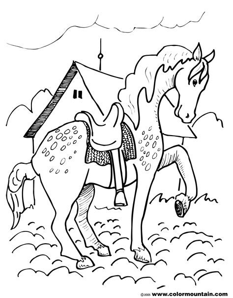 coloring pages of horses and puppies coloring pages of horses and dogs dog cats coloring