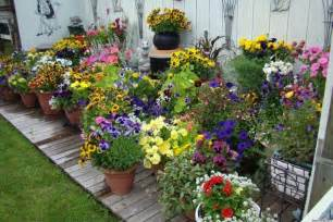 Potted Garden Ideas 10 Pretty Container Gardens That Are For Any Home Photos Huffpost