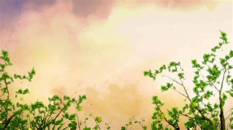 Free Wedding Animation Background by Free Hd Wedding Background Free Motion