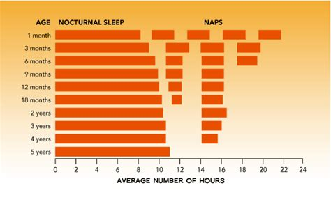 sleep pattern wake up all about baby s sleeping pattern vividideas
