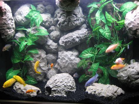 Desk Top Aquarium by 33 Attractive Aquarium Background Technosamrat