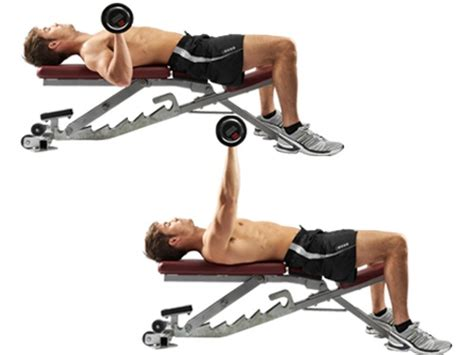 bench press chest chest bench press exercises pinterest