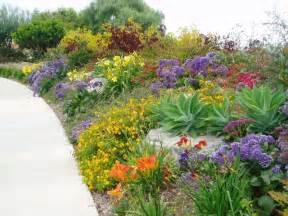 Kitchen Designers San Diego Succulent Gardens Mediterranean Landscape San Diego