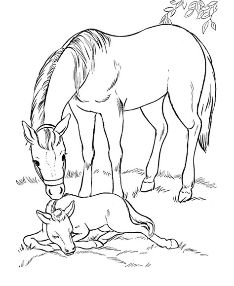 coloring pages of horses and puppies horse coloring page mare and her sleeping foal horse