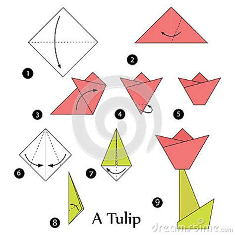 3d Origami Step By Step Illustrations - step by step how to make origami a tulip