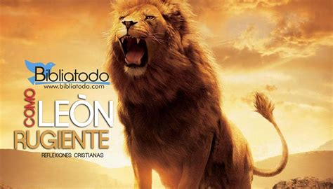 imagenes con leones cristianas como le 243 n rugiente reflexiones bibliatodo com