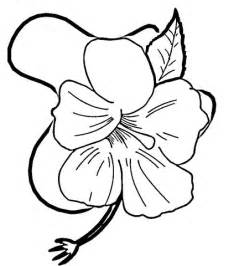 coloring pages of hibiscus flowers hibiscus flower coloring page supercoloring