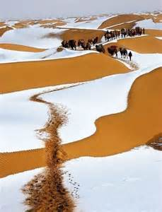 winter snow sahara desert 161 que sitios pinterest