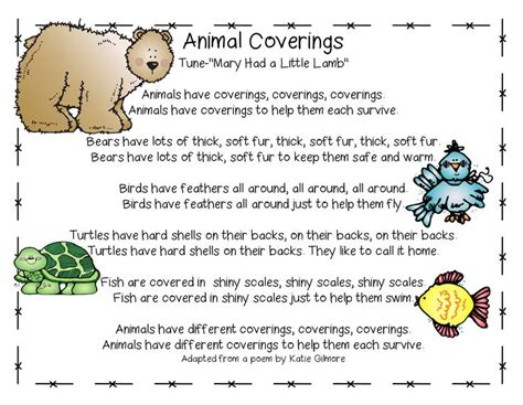i mammal the story of what makes us mammals books best 25 animal poems ideas on farm animal